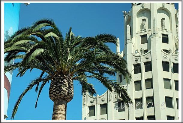 LA_074.jpg