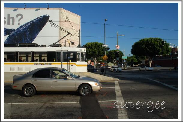LA_109.jpg