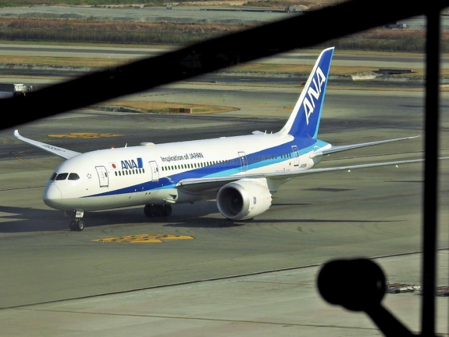 ANA 787.jpg