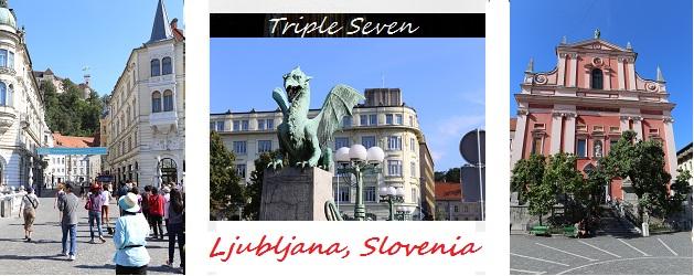 Tn Lublinia.jpg